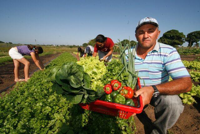 Produtos certificados com Selo Nacional da Agricultura Familiar crescem 900%