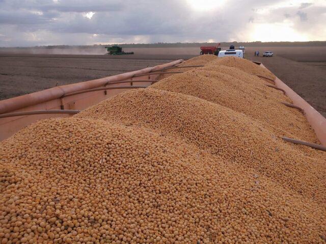 Colheita da soja segue atrasada e apenas 45,7% da área foi recolhida no país