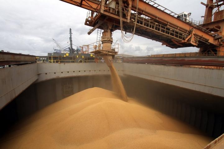 Exportações brasileiras de milho aumentam em dezembro