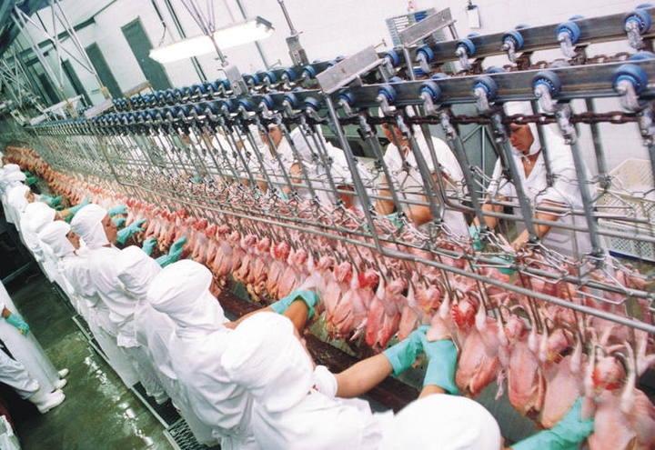 Abertura do mercado da Índia para frango prevê tarifas de 30%, diz ABPA