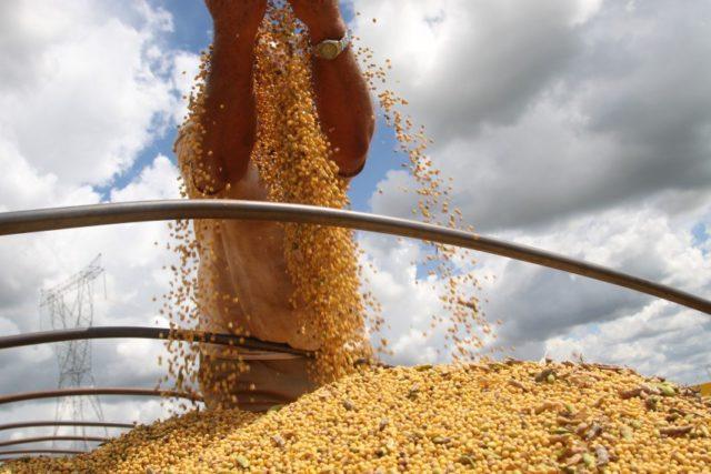 PIB do Brasil sobe 0,6%; agropecuária registra maior alta entre os setores