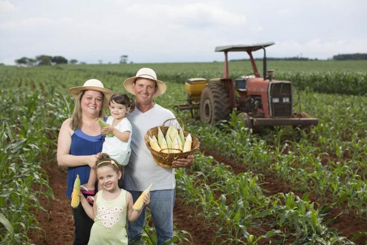Agricultura familiar: confira a lista de produtos com desconto em junho