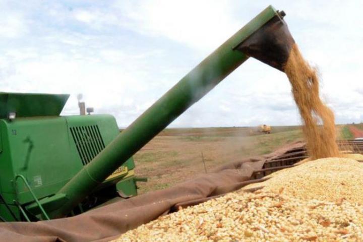 Preços da soja registram novas altas e saca vai a R$ 130 em Paranaguá